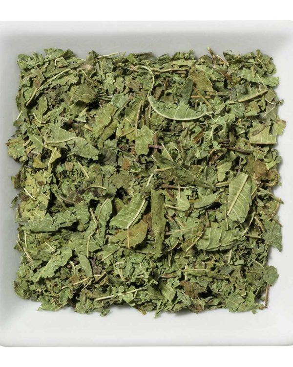 2406 Herbal Infusion VERVAIN LEAVES PRIME Verbena officinalis